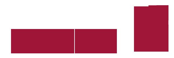 Sozialdienst katholischer Frauen - SkF Osnabrück